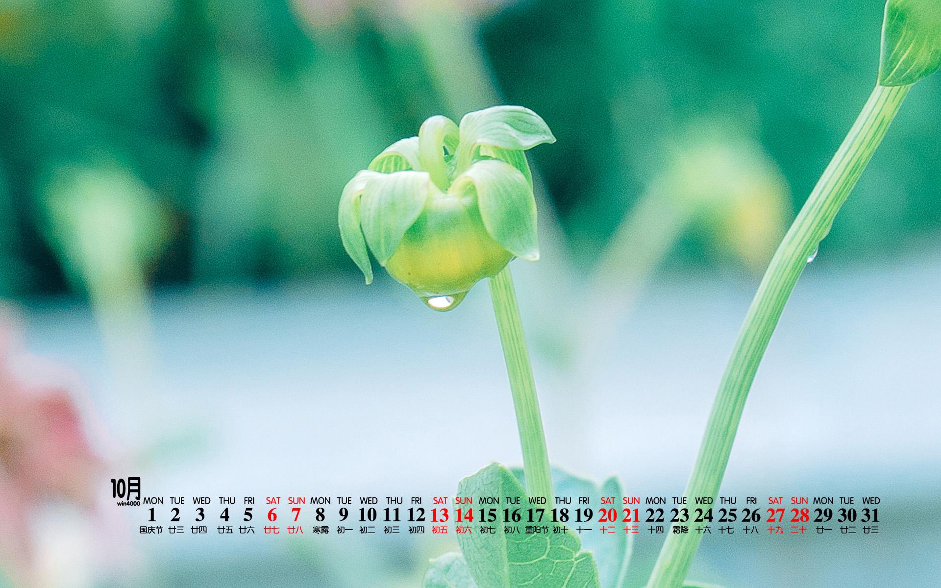 2018年10月护眼绿色植物高清桌面日历壁纸